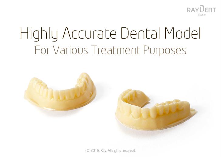 Dental/Ortho Model
